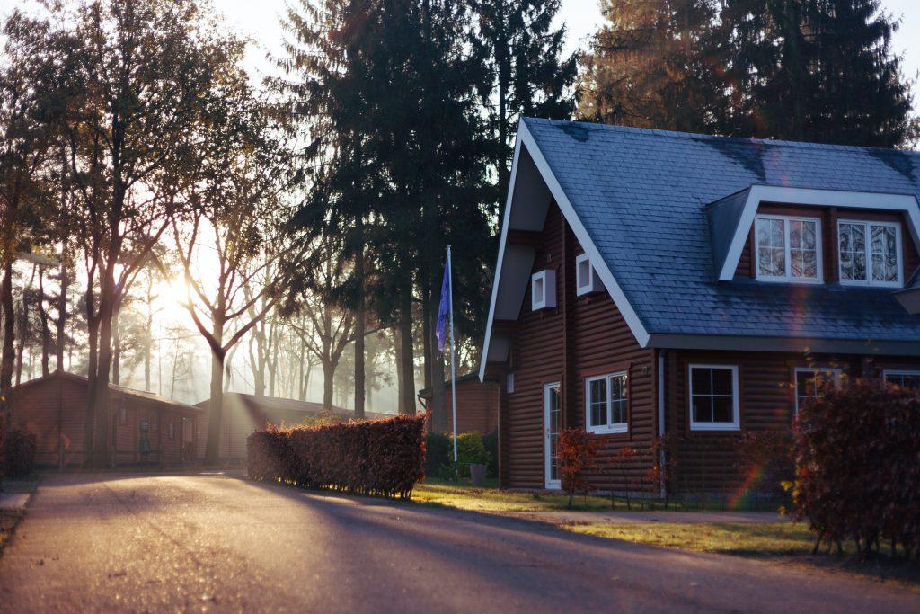 Maison en bois entourée d'arbres